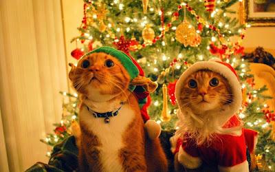 imagenes-de-navidad-2014-gratis-postales-navideñas-con-mensajes-de-feliz-navidad-y-próspero-año-nuevo-2014-gratis-5